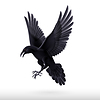 Raven-Nevermore13