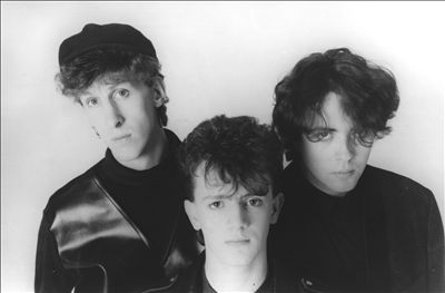 Icicle Works photo